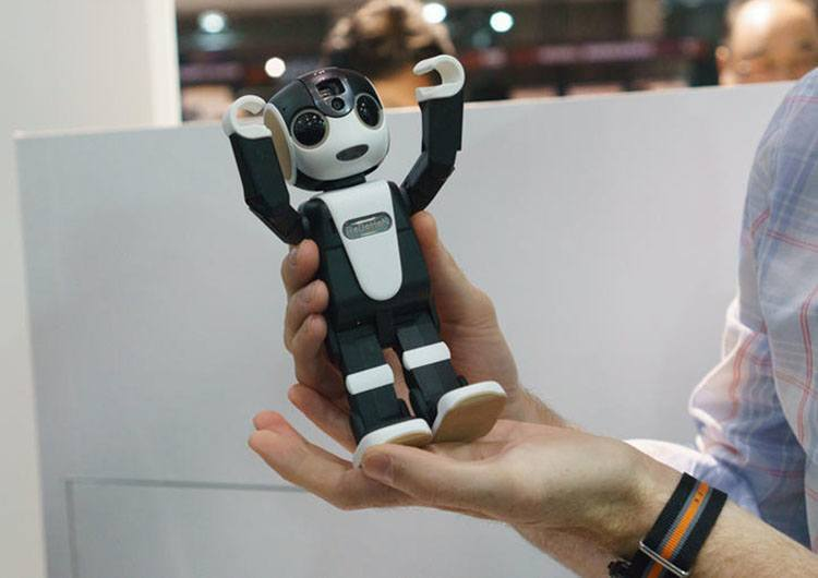 robohon in my hand