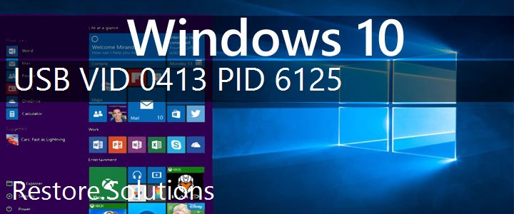 USB\VID_0413&PID_6125 Windows 10 Drivers