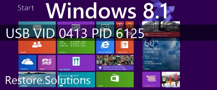USB\VID_0413&PID_6125 Windows 8.1 Drivers
