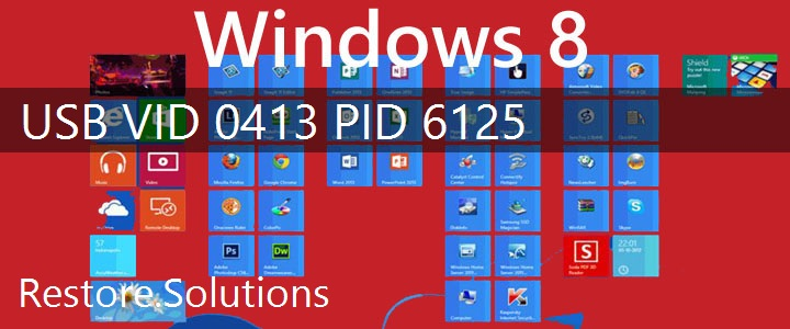 USB\VID_0413&PID_6125 Windows 8 Drivers