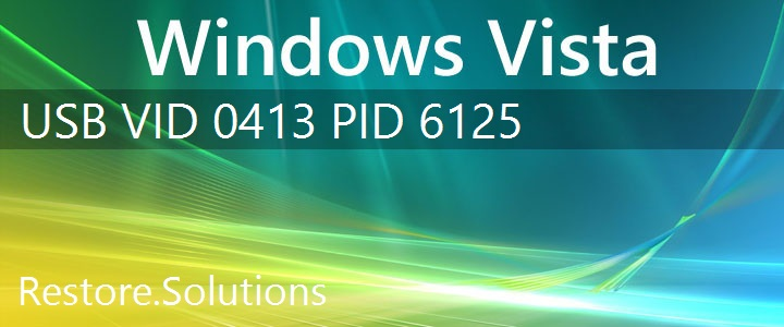 USB\VID_0413&PID_6125 Windows Vista Drivers