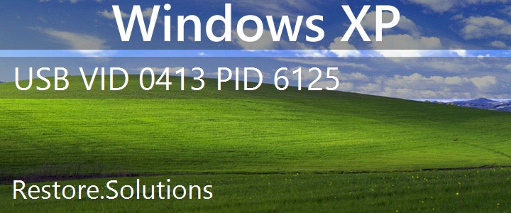 USB\VID_0413&PID_6125 Windows XP Drivers