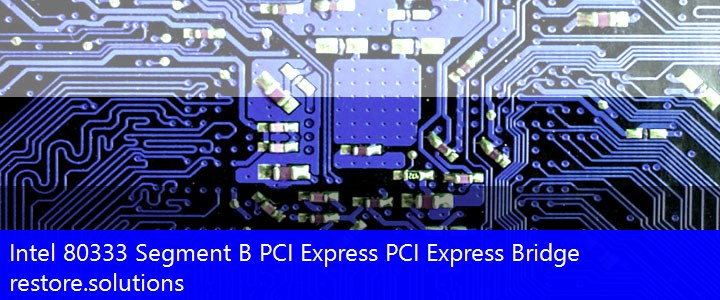 Intel® 80333 Segment B PCI Express PCI Express Bridge System PCI\VEN_8086&DEV_0372 Drivers