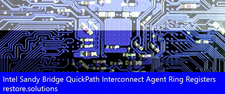Intel® Sandy Bridge QuickPath Interconnect Agent Ring Registers System PCI\VEN_8086&DEV_3CE6 Drivers