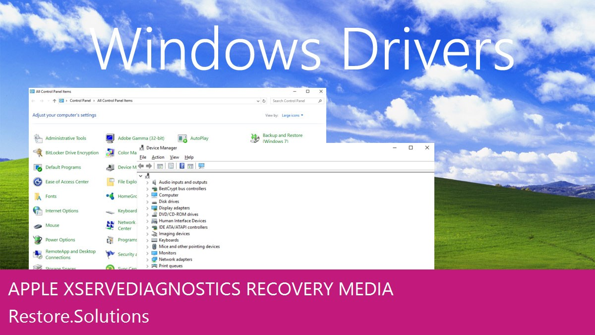 Apple Xserve Diagnostics Windows® control panel with device manager open