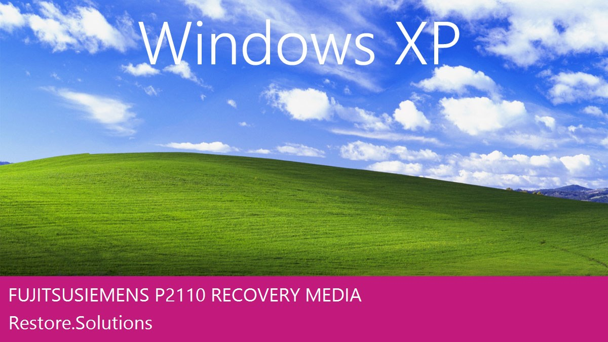 Fujitsu Siemens P2110 Windows® XP screen shot