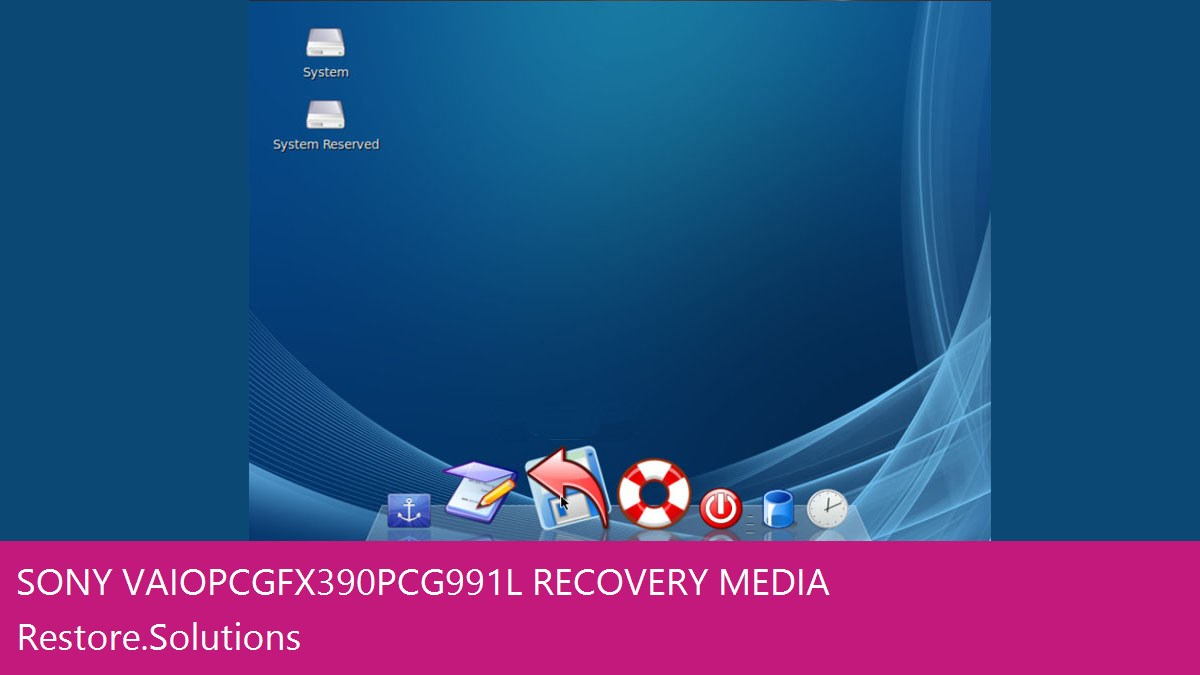 Sony Vaio PCG-FX390 - PCG-991L data recovery