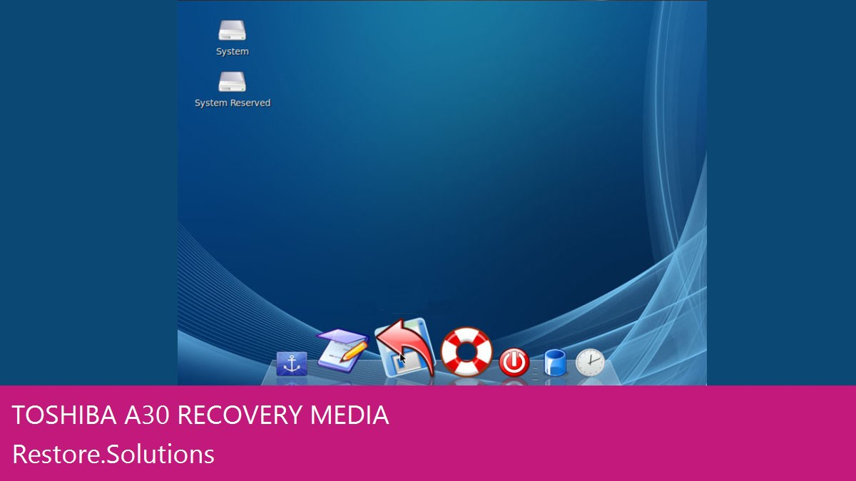 Self Contained Toshiba® A30 Data Recovery Operating System Software